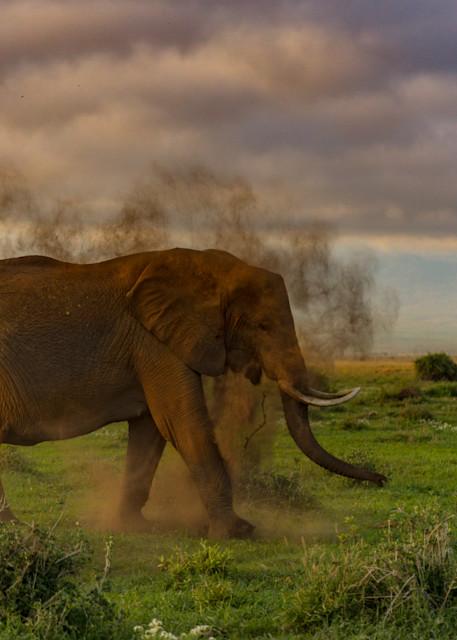 Flinging Dirt Photography Art | danieldauria