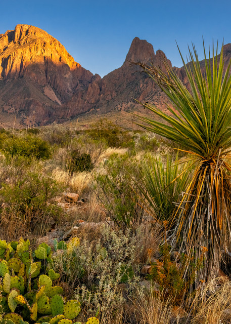 Last light on the Chisos Mountains - Big Bend National Park photography prints