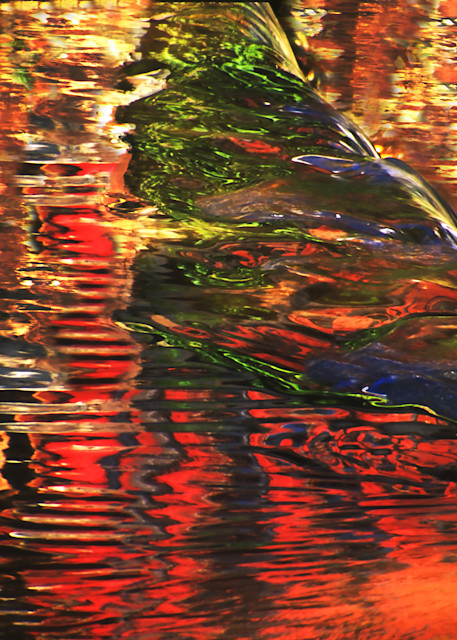 Fall Reflections Photography Art | cosimo scianna