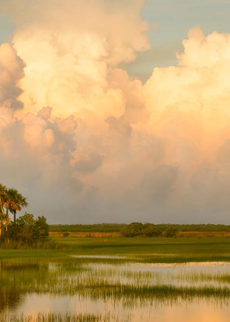 Costance Mier fine art photographs of Everglades Prairies