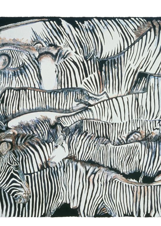 Zebra Giclee Art Prints by Dee Van Houten