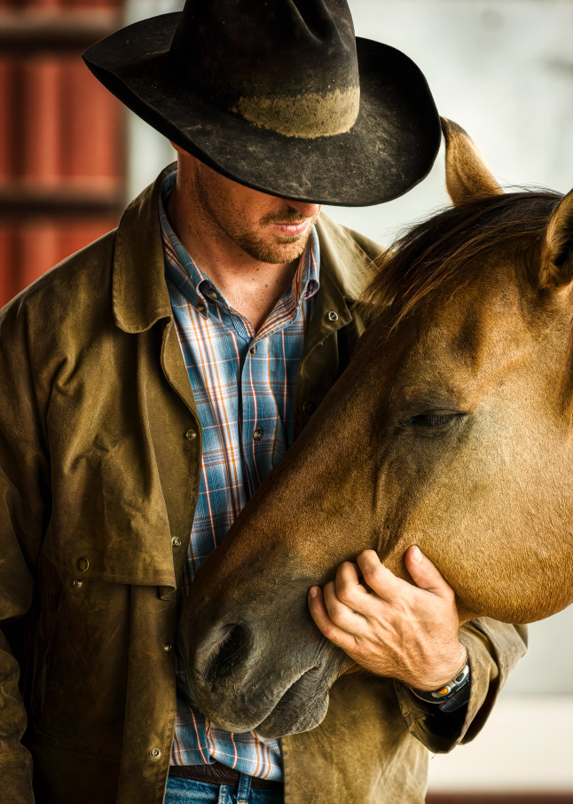 western, ranching, cowboy, horse,tenderness,vertical, Texas