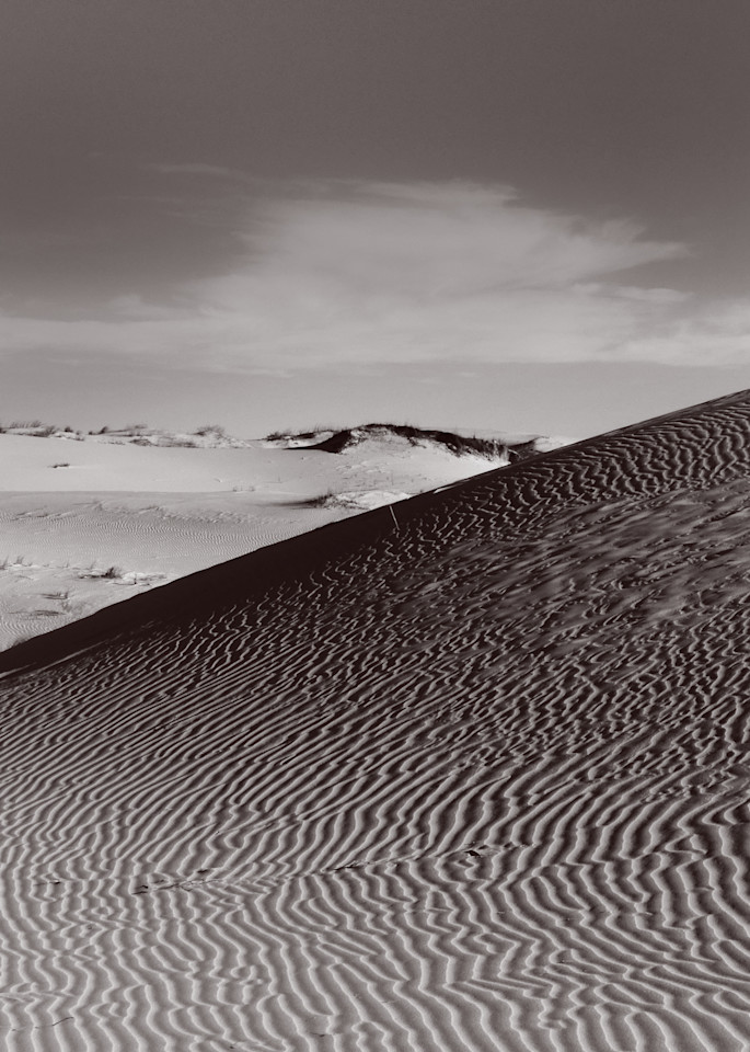 The Hip Horizon Photography Art | Galeria Mañana