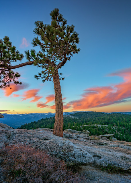 Sentinel Dawn   Shop Photography by Rick Berk