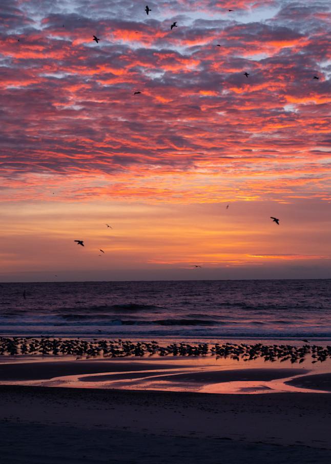Sunrise, Beach, and Sky - shop fine art prints | Closer Views