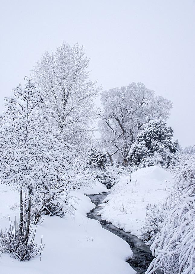 Ice Cold Art | Fine Art New Mexico