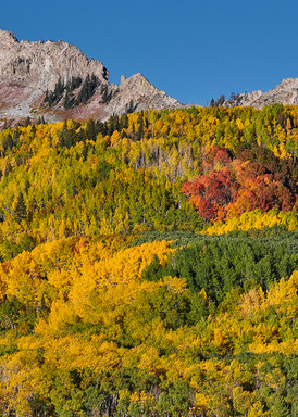 Cliff Creek View
