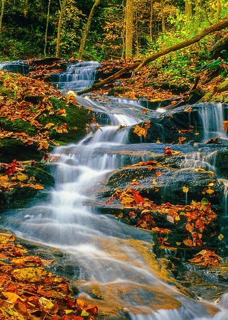 Cascade Falls  Photography Art | Whispering Impressions