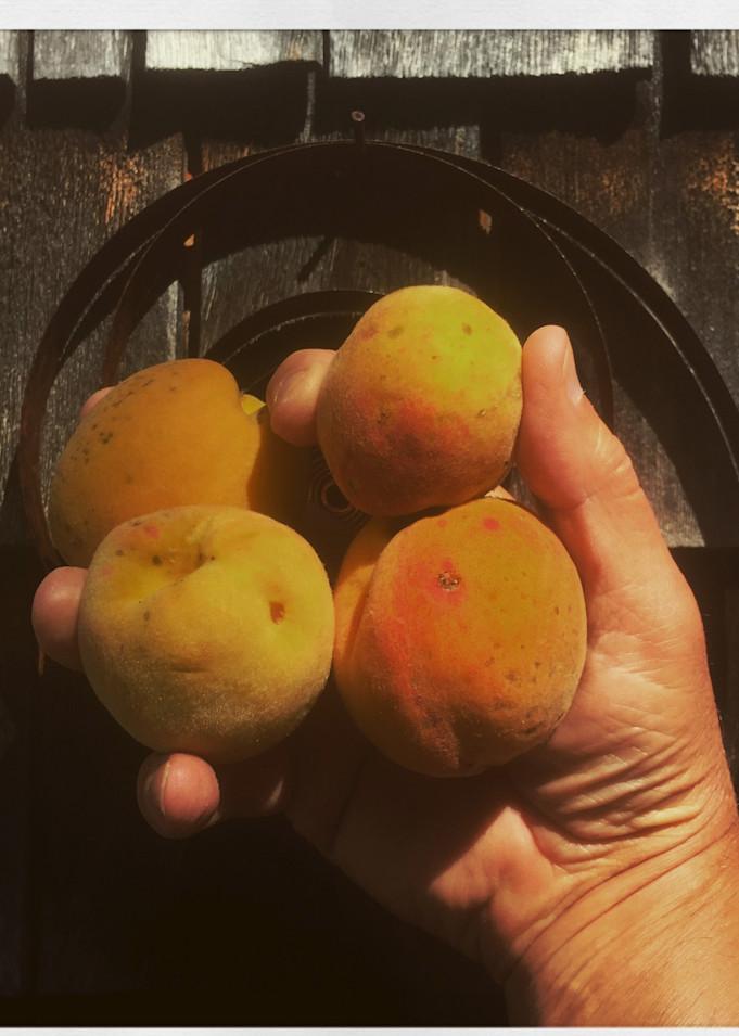 4 Peaches Instagram Print