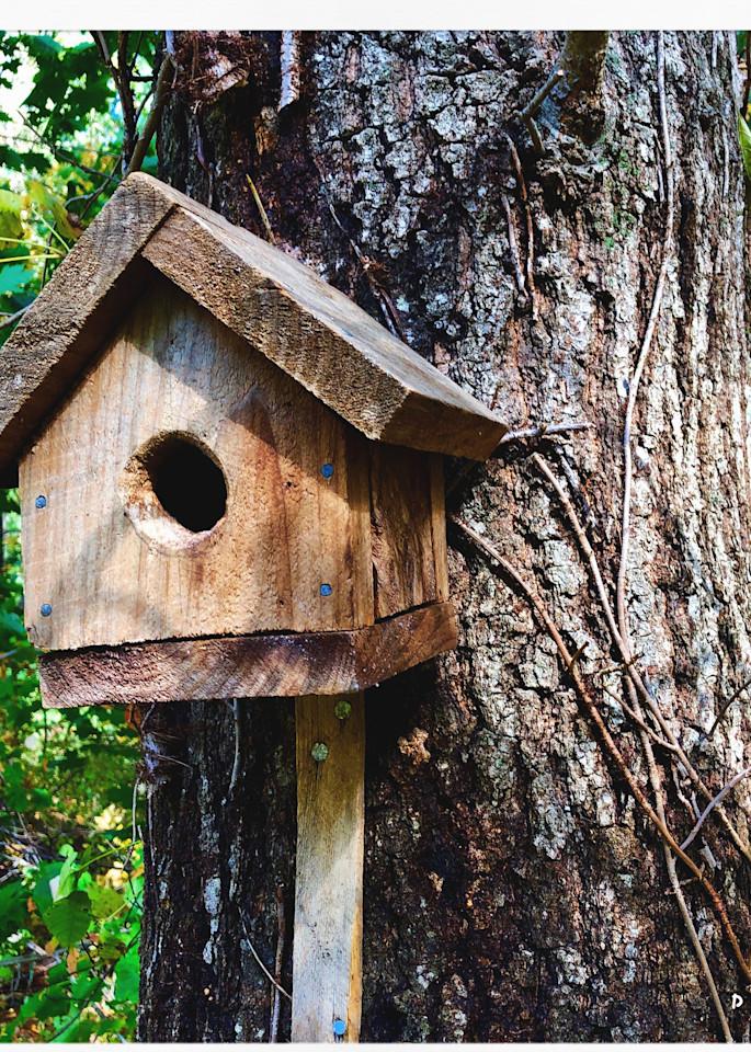 Cub Scout Bird House