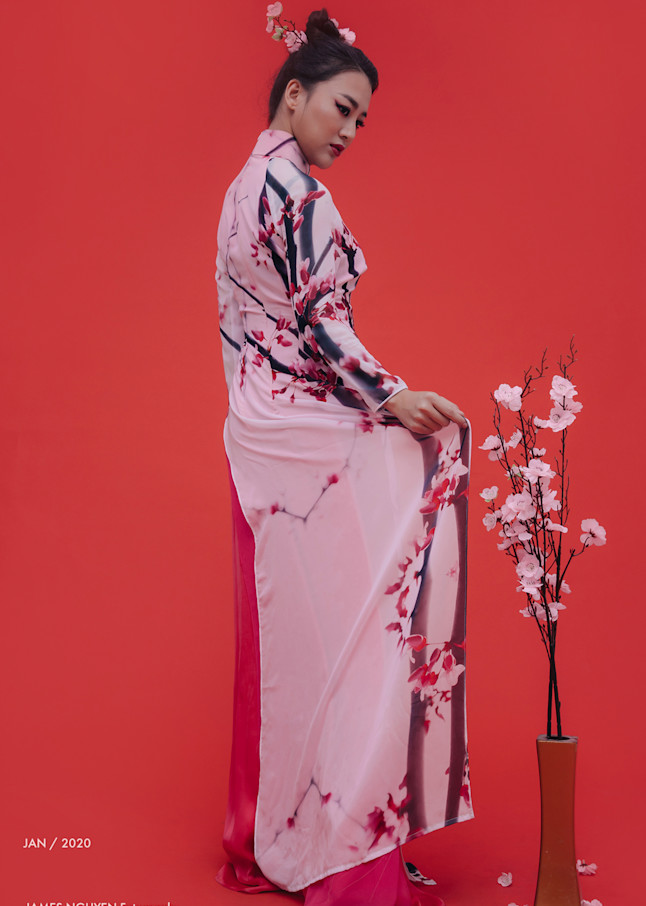 Cherry Blossom Ao Dai 2 Photography Art | David Louis Klein