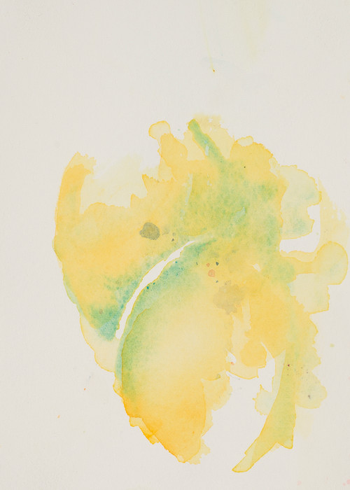 Lemons  Art | Debra Bruner Studio