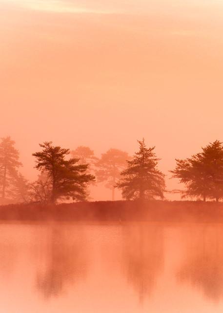 Vanishing Mist