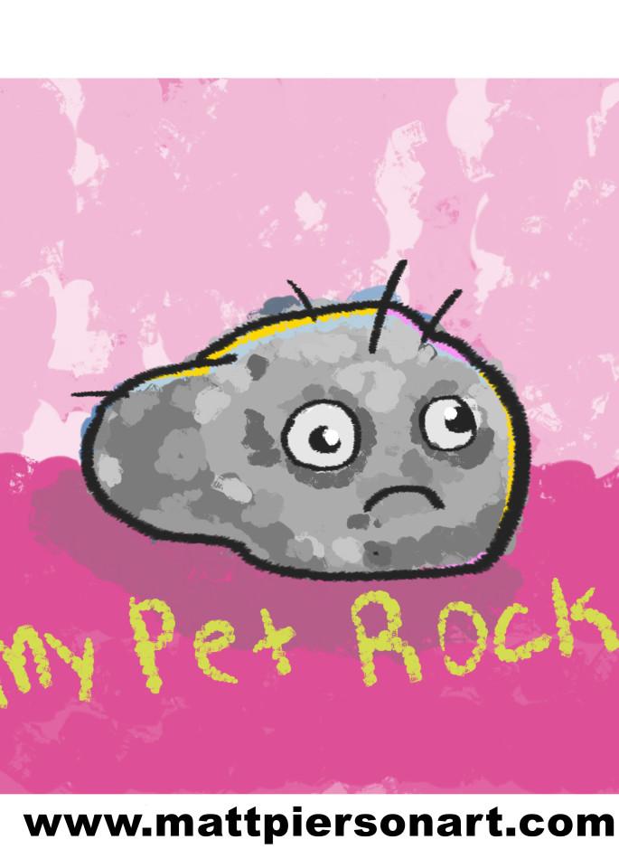 my pet rock