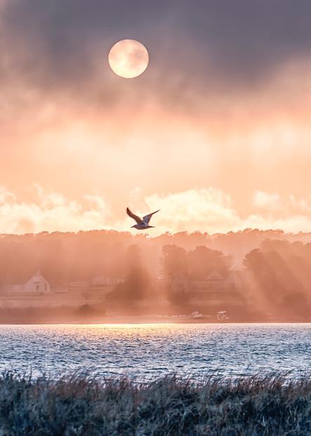 State Beach Seagull Clouds Art | Michael Blanchard Inspirational Photography - Crossroads Gallery