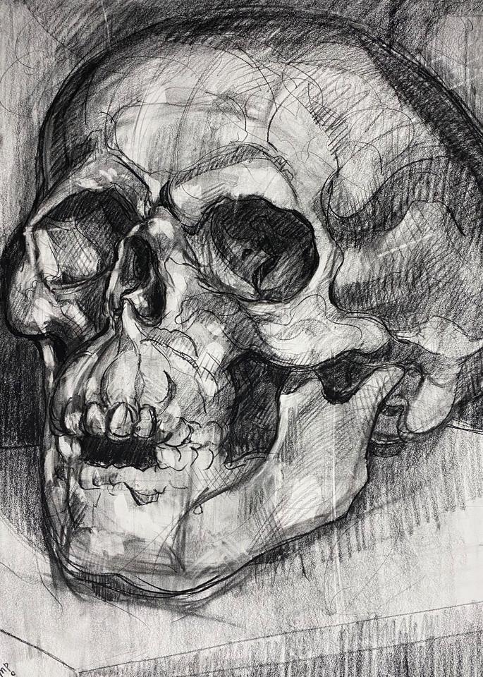 Skull V.5 Art | Matt Pierson Artworks