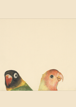 Lovebirds Giclee Print by Dee Van Houten