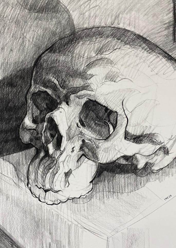 Skull V.8 Art | Matt Pierson Artworks