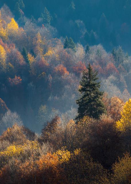 Autumn In Svaneti Photography Art   Laura Tidwell Photography