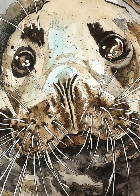 Sea Lion Art | Water+Ink Studios