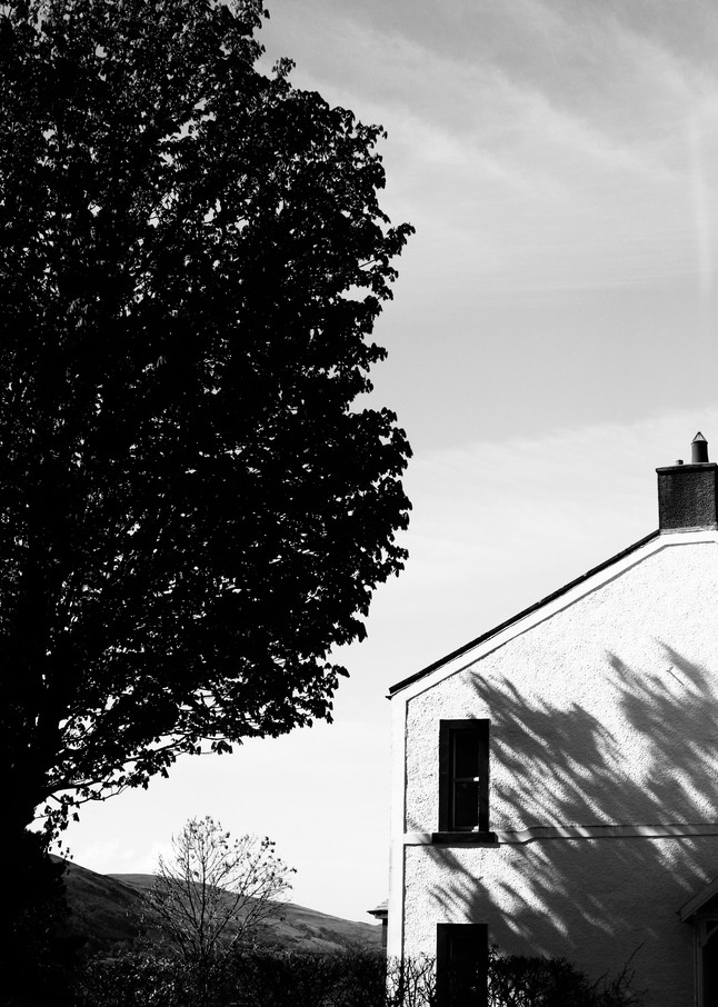 English Countryside Photography Art | Belathée Fine Arts by Belathée Photography