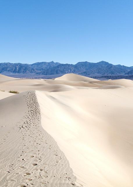 Dunes Of Death Valley Art | Chad Wanstreet Inc