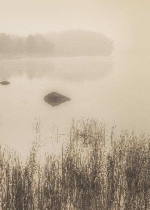 Pond Scene Early Morning Ohio Photography Art | Mark Steele Photography Inc
