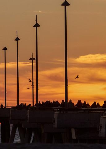 Venice Pier Silhouette Photography Art | Michael Scott Adams Photography