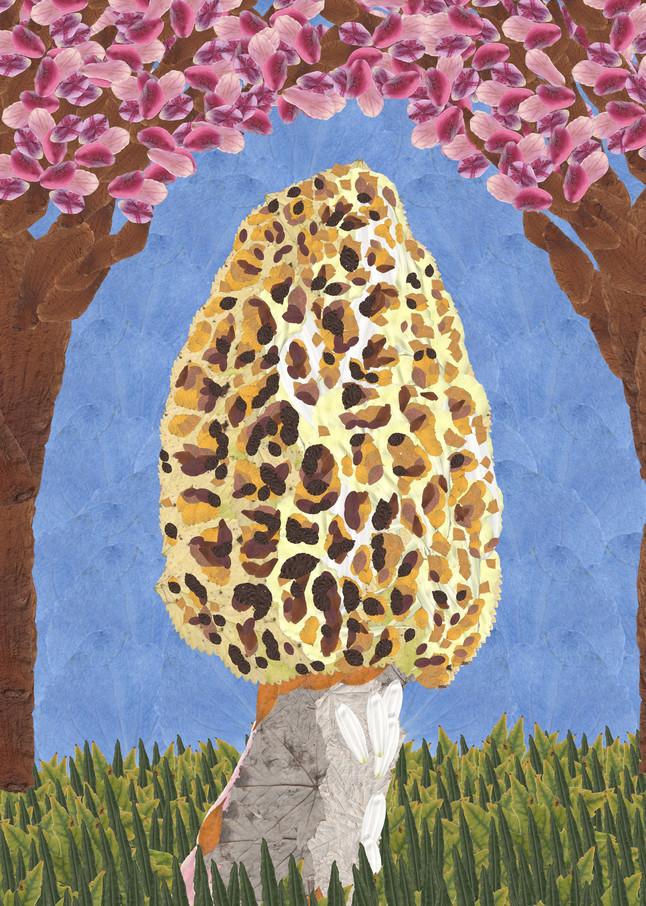 Morel Mushroom Art | smacartist