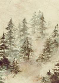 Mountain Morning  Art | donnadacuti