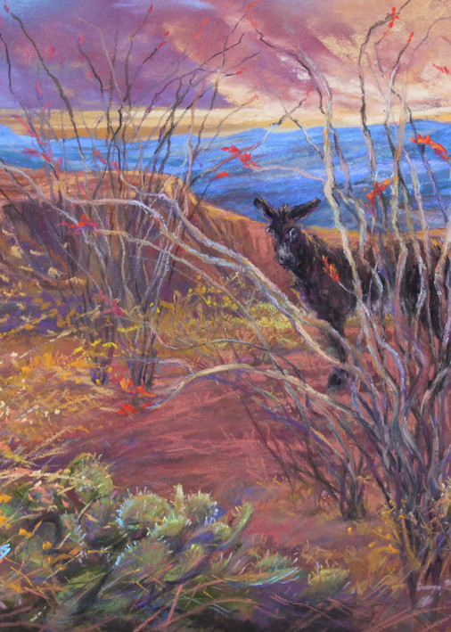 Lindy Cook Severns Art | Coloring the Desert, print