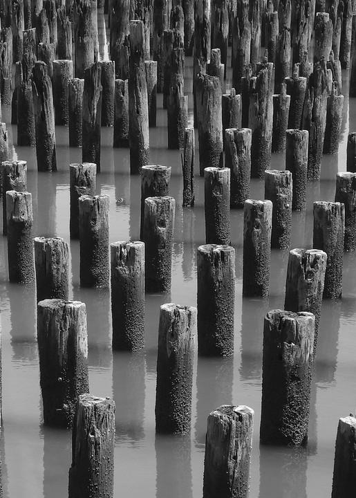 Hudson River Sentinels   B/W Art   Allan Gorman Fine Art