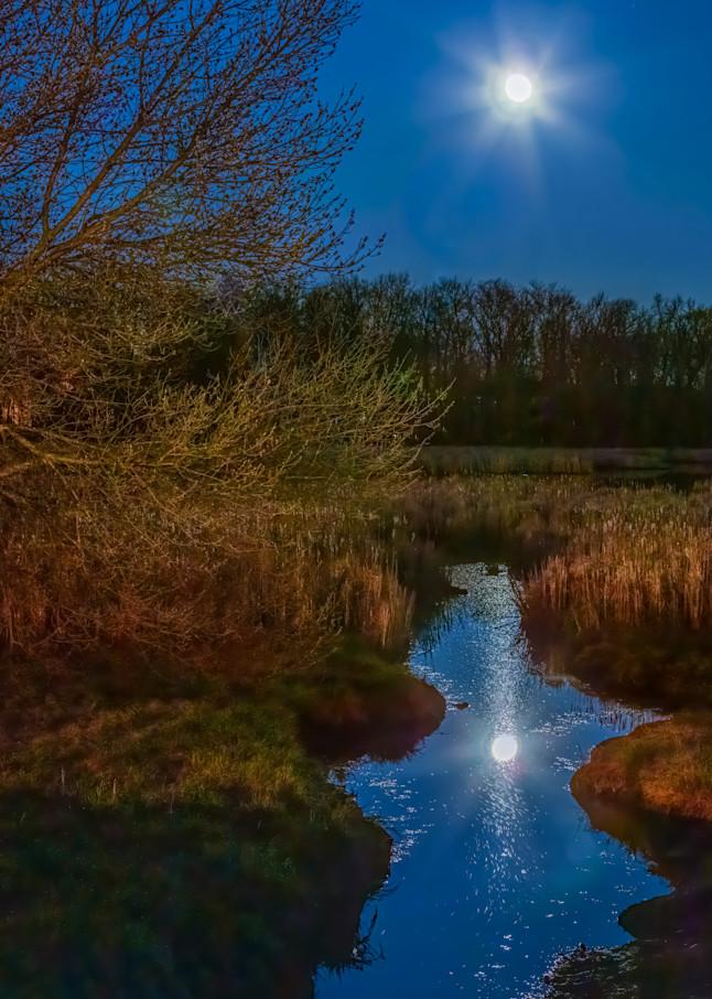 Moonlight At The Gluckenberg Sturm Preserve Photography Art   brucedanz