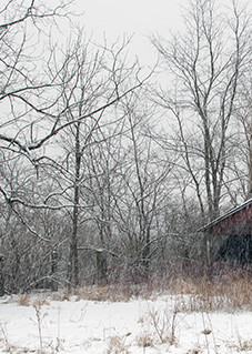 February in Monroe County - Michael Sandy Photography