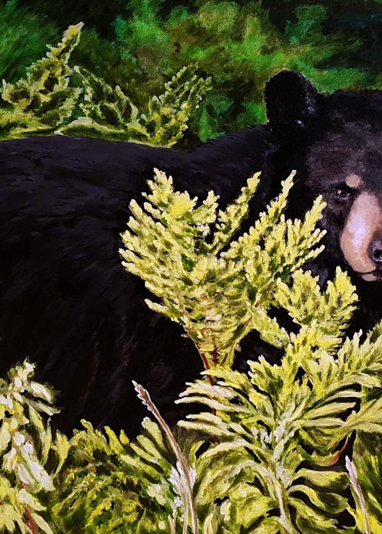 Black Bear Art   Lynda Moffatt Fine Arts