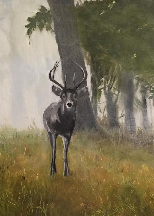 Deer Morning Art | Scott Dyer Fine Art