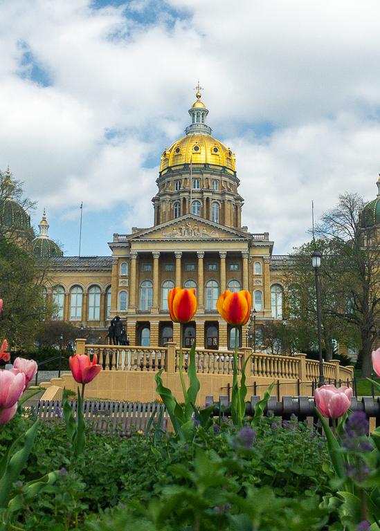 Tulips At The Iowa Capitol Photography Art   Happy Hogtor Photography