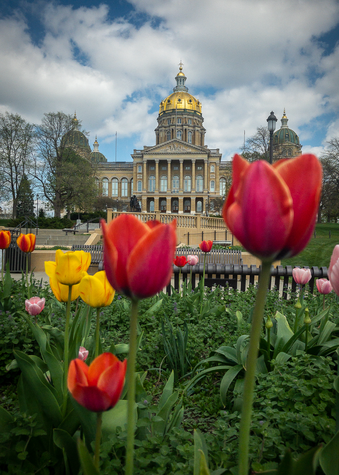 Springtime At The Iowa Capitol Photography Art | Happy Hogtor Photography