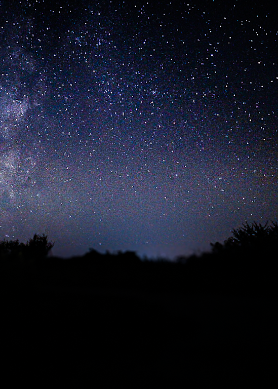 Milky Way #2 Photography Art | Happy Hogtor Photography