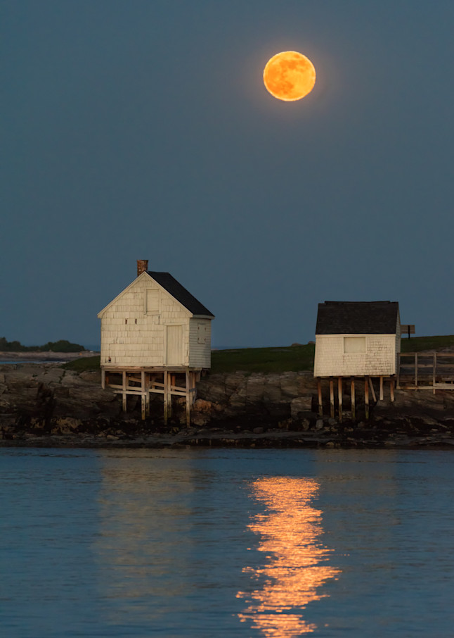 Moonrise At Willard Beach Photography Art | Jesse MacDonald Photography