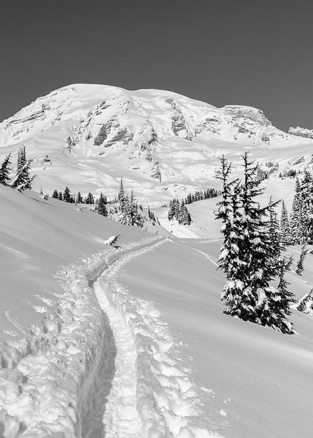 Snow Trail, Paradise, Mount Rainier, Washington, 2017