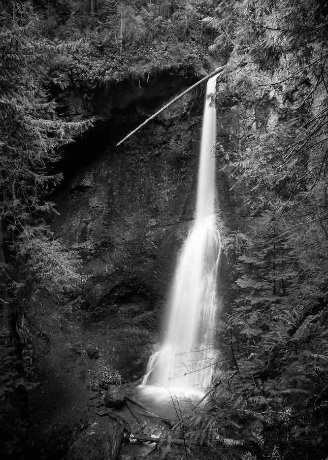 Marymere Falls, Olympic National Park, Washington, 2016