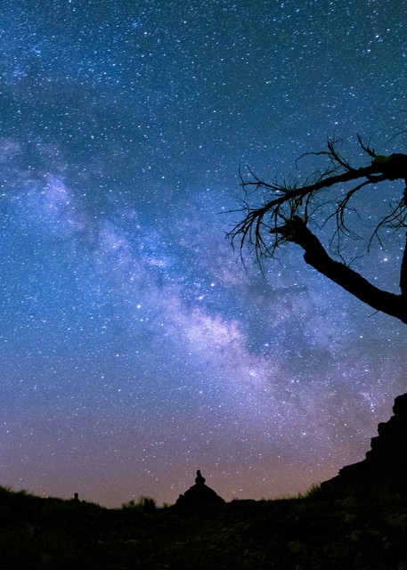 Milky Way With Tree, Valley Of The Gods Photography Art | John Gregor Photography