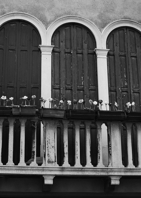 Rustic Window and Venetian Glass Flowers in Italy Photograph – Murano Glass Photography - Fine Art Prints on Canvas, Paper, Metal & More