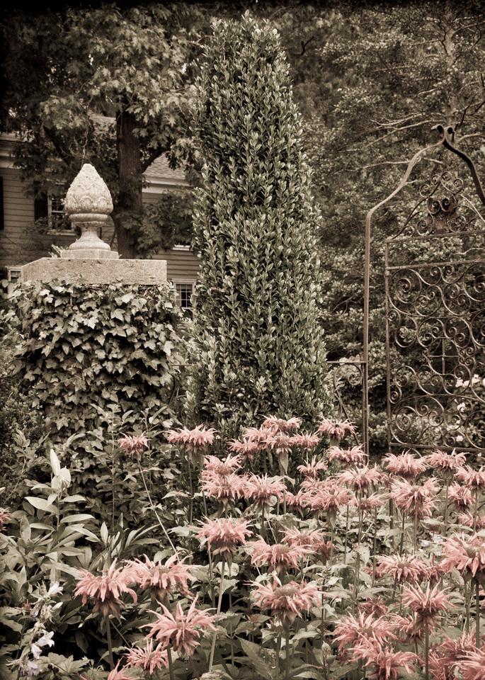 In the Formal Garden #1