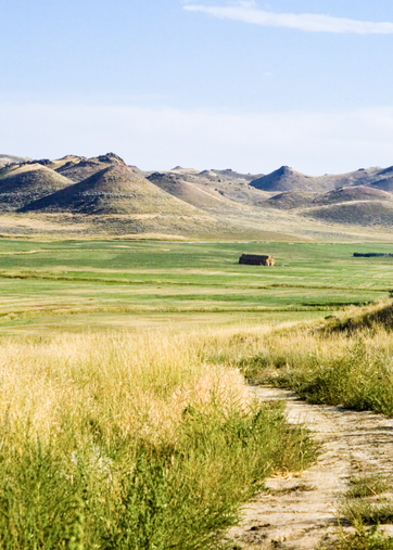 Wyoming Ranch Road  Photography Art | Hatch Photo Artistry LLC