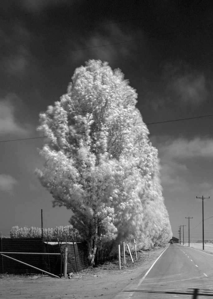 Casper Road   Oxnard Photography Art | Julian Whatley Photography