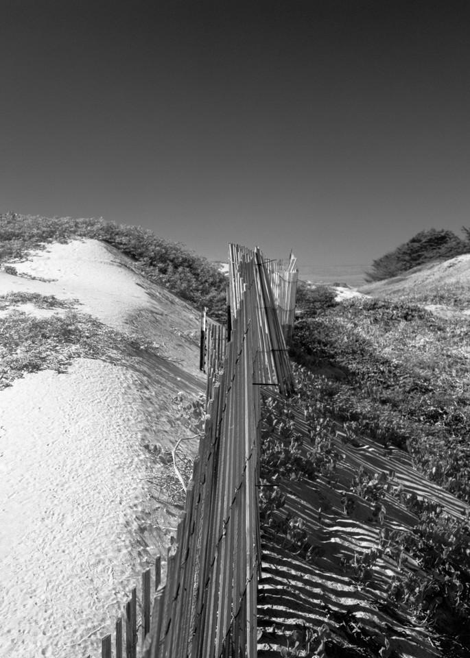 Sand Fence   Surf Dunes Photography Art | Julian Whatley Photography