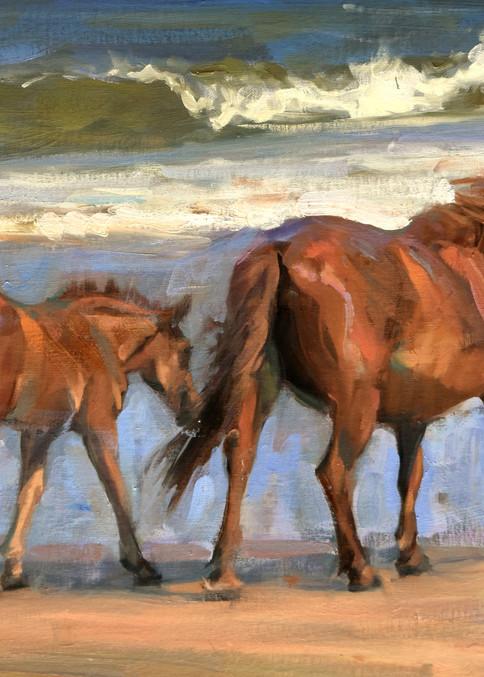 Corolla Mare And Foal  Art | robincaspari