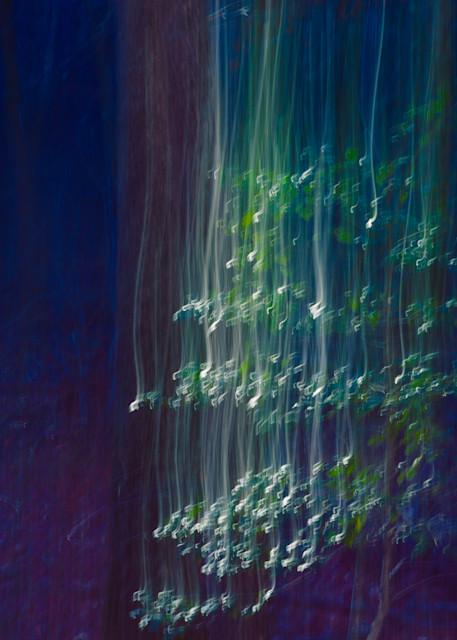 Nature Abstract 4679 Photography Art | Dan Chung Fine Art